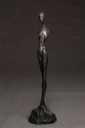 Venus by Matthew Levin