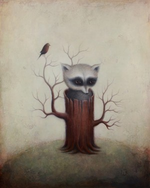Raccoon By Paul Barnes