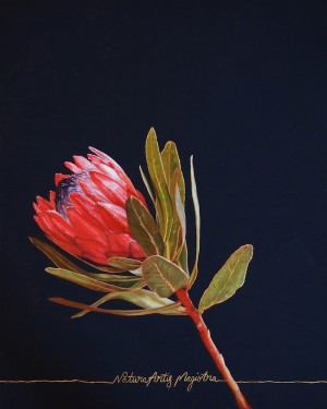 Nature Is The Teacher Of Art Protea by Chelsea Gustafsson