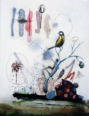Observer by Collin van der Sluijs