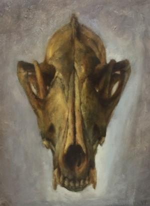 Skull (Coyote) by Valerie Pobjoy