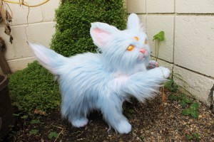 Sylph Oracle Kitten by Lee's Menagerie