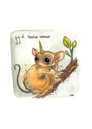 Tarsius Cornus by Shing Yin Khor