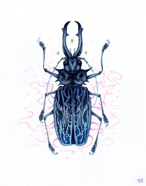 Long-Horned Beetle by Nana Williams