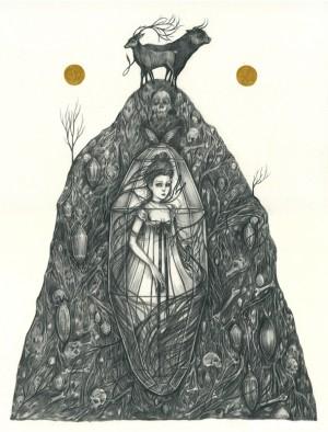 The Glass Coffin by Liza Corbett