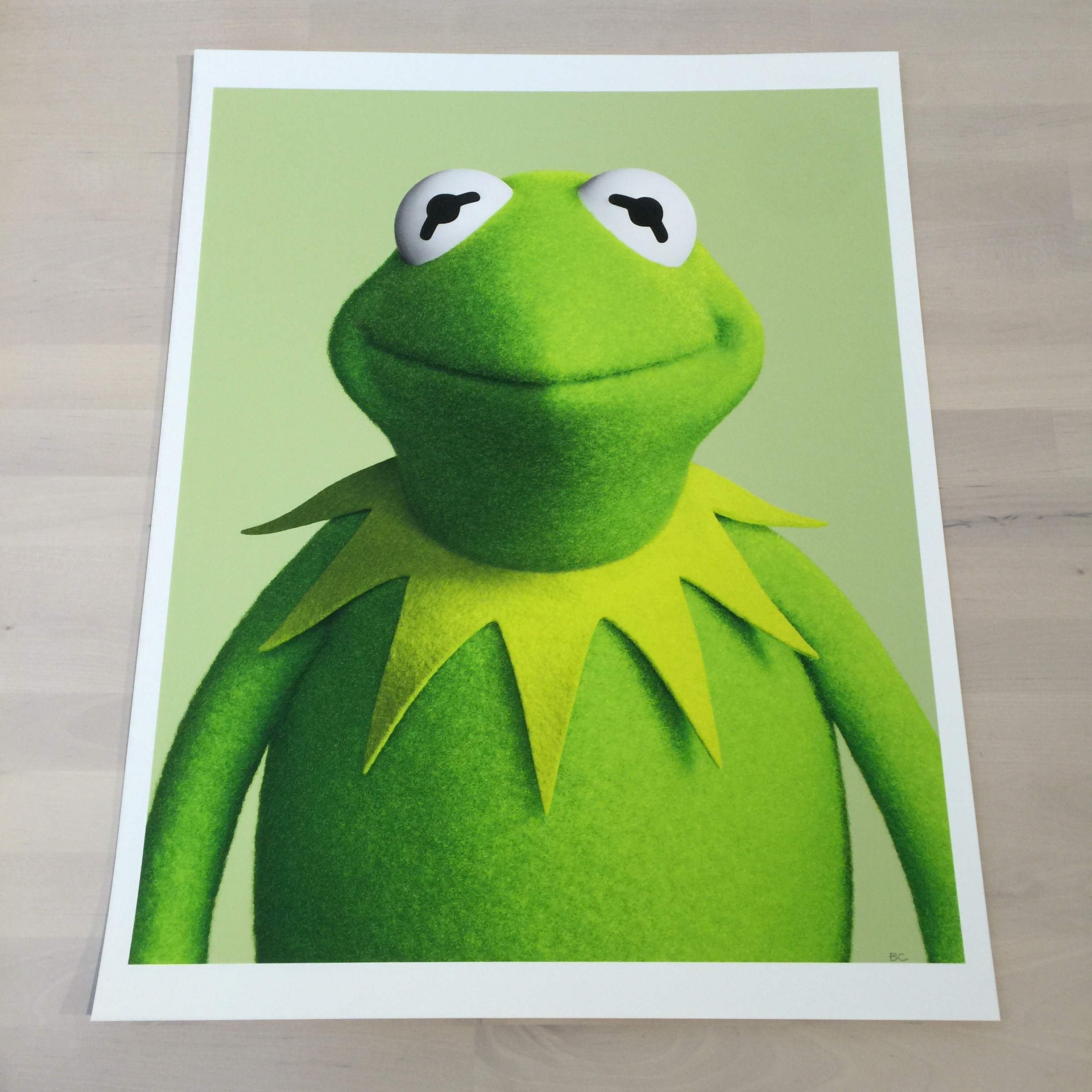 Frog pictures of kermit the