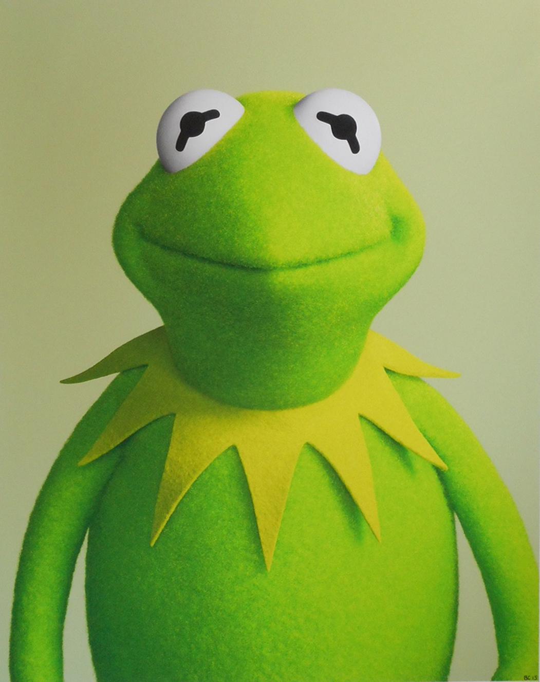 Kermit's Swamp Years - Wikipedia