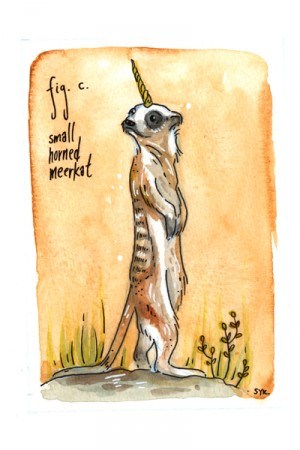 Small Horned Meerkat by Shing Yin Khor