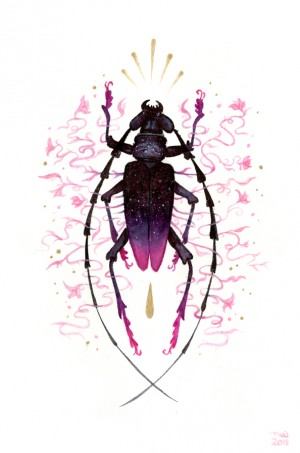 Great Capricorn Beetle by Nana Williams