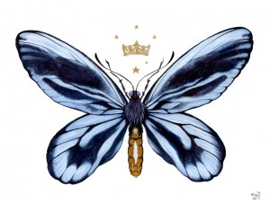 Queen Alexandra's Birdwing by Nana Williams
